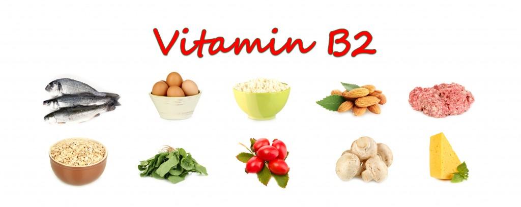vitamin b2 lebensmittel